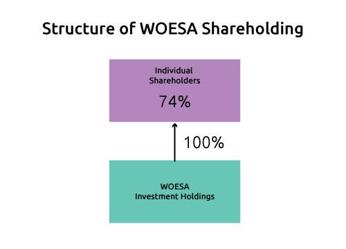 woesa-shareholder-structure-fan-2020-2